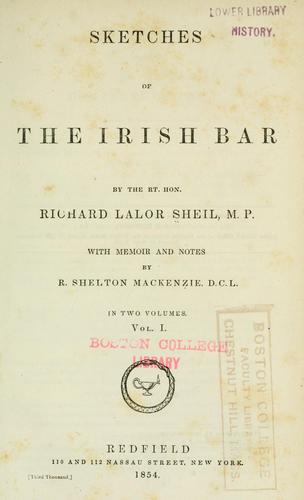 Download Sketches of the Irish bar