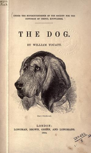 The dog.